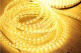 indicatore luminoso giallo esterno della corda di 220V LED per la decorazione