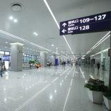 3014 204LEDs chiari impermeabilizzano/striscia non-impermeabile del LED con Ce&RoHS