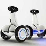 Elektrischer Roller mit einfachem abnehmbarem Batterie-Satz