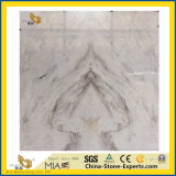Het Witte Marmer van Castro voor Plak, Tegel, Vloer, Muur, Project