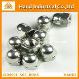 Acero inoxidable hexagonal de metal con tapa Cap Nut