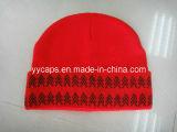 빨간 뜨개질을 한 온난한 모자 (YYCM-120356)