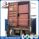 Venta caliente de alta calidad en cifras brutas Paulownia Blockboard contrachapado comercial