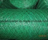 "China-Lieferant 1/2 "" 3/4 "" sechseckige Maschendraht-Huhn-Maschendraht-Qualität"