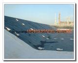 Negro HDPE plástico hoja LDPE Geomembrane Proveedores
