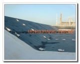 Negro hoja de plástico de HDPE LDPE Geomembrana Proveedores