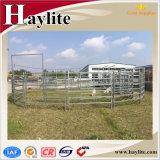 Bewegliches galvanisiertes Vieh-Yard-Verladesystem