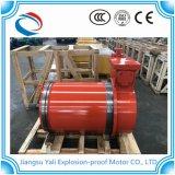 Motore a tre fasi protetto contro le esplosioni di raffreddamento ad acqua di serie di Ybc