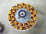 Matrici di stampaggio della laminazione d'acciaio del motore del silicone ad alta velocità
