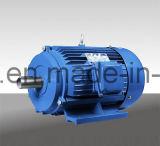 Motor de inducción trifásico de alta eficiencia de la serie Y2 / Y3