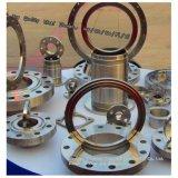304 316L ANSI Standard bride en acier forgé Dn10 ~ Dn4200