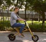 電気自転車を折る/電気バイクを折る電気バイクの製造業者の卸売DC36V 250Wの小型Eバイクのポータブル