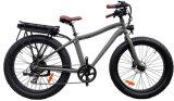 Gros vélo d'E avec la crémaillère arrière et gros pneu