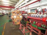 700KW de cogeneración de Gas Natural generación combinada de calor y electricidad