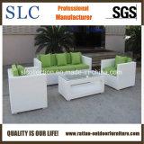 Haut de meubles en rotin blanc populaire en plein air (SC-B8219)