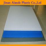 Kleurrijke pp Corrugated Plastic Sheet 4X8