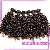 Yvonne 아프리카 브라질 비꼬인 꼬부라진 자연적인 머리