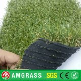 PE Pet Artificial Grass e Synthetic Turf