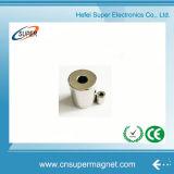 Magneti del cilindro del neodimio utilizzati in motore