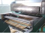 2016 la CE aprobó la línea de producción de fideos instantáneos frito