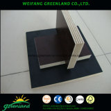18mm Black Film Finger Joint Core Fill Faced Plywood