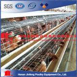 層の肉焼き器の若めんどりのためのタイプ自動家禽装置の鶏のケージ