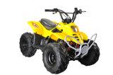 50cc/70cc/One Seat (MDL GA001)를 가진 110cc Kids Mini ATV