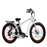 큰 리튬 건전지 750W 후방 허브 모터 전기 자전거