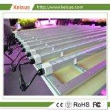 LED Fixture croissant avec 12 LED croître pour les plantes d'usine de lumière