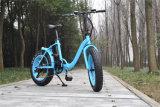 """20 """"安く脂肪質のタイヤの電気バイクを折る合金"""