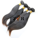 Trama européia brandamente reta natural do cabelo humano do Virgin da cor