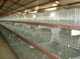 Горячие продажи куриных отсек для фермы