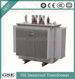 Bipolar en tres fases montado a 33kv 4000 kVA transformador sumergidos en aceite