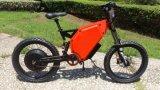 Elektrischer Motorrad 8000W Soem-Hersteller