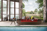 Tabela de alumínio HS7060et ao ar livre/do jardim/Patio/Rattan/
