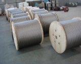 Ss 316 1X7 7X7 7X19のステンレス鋼ワイヤーロープはコイルによって詰まった
