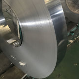 piatto laminato a freddo spesso libero inciso 316L/bobina dell'acciaio inossidabile del reticolo del campione 1.2mm di rivestimento 2b