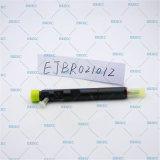 Ejbr02101z Dieseleinspritzdüse Ejbr02101z der einspritzdüse-Ejbr02101z Delphi für Renault 8200240244