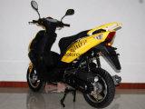 Tzm50f-22 50cc/125cc/150cc 가스 스쿠터