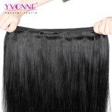 Diritto naturale dei grandi dei capelli umani dei capelli di Yvonne dei capelli capelli brasiliani di trama naturali di riserva di Remy
