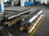 鍛造材SAE8620 SAE4140の鋼鉄ワームの不安定なシャフト