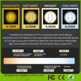 2017 세륨 RoHS를 가진 새로운 5W 6W 일광 백색 (5000K) E12 LED 초 전구는 목록으로 만들었다
