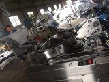De kauwende Machine van de Verpakking van het Hoofdkussen van de Hoge snelheid van de Suiker Automatische