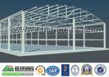 Fascio della gru e fascio del baldacchino per il gruppo di lavoro della struttura d'acciaio