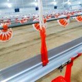Maison de la volaille de haute qualité silo d'alimentation