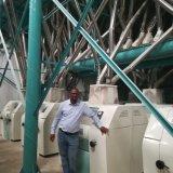 50t Malawi sémola de maíz máquina