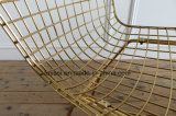 Gridding 금 색깔 그리고 백색 PU 방석 의자