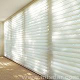 Zonneblinden van de Rol van het venster de Blinde Elektrische Dubbele