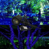 Proiettori esterni verdi e blu del laser