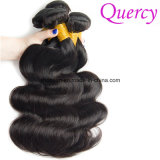 最上質のバージンの速い出荷のブラジルの毛の卸売